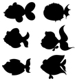 silhouettes fishes vector image