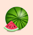 watermelon and cut slice texture of the vector image vector image