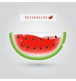 watermelon fruit juice vector image