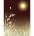 butterfly grass vector image