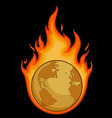 Burning Desolated Earth vector image vector image
