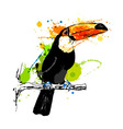 Colored hand sketch toucan vector image vector image