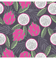 fruit seamless pattern dragon fruit vector image vector image