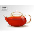 glass teapot with tea isolated on vector image vector image