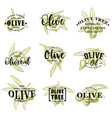 olive oil and branches icons lettering vector image