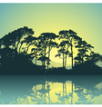 trees silhouette vector image vector image