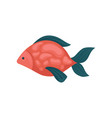 aquarium fish with red spotted body and blue fins vector image vector image