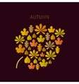 Autumn background with leaves icons