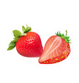 fruit icon strawberry split white background vector image