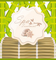 spa emblem to healthy treatment skin vector image