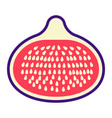 fig flat icon fruit and diet graphics vector image