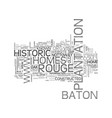 baton rouge historic homes text word cloud concept vector image vector image