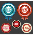 Best seller and choice labels with ribbon vector image vector image