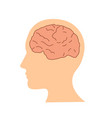flat design human brain in head icon vector image