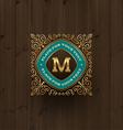 Monogram logo vector image vector image