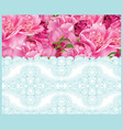 peony flowers and delicate lace card springtime vector image vector image