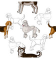 seamless pattern with dogs hand drawn dogs vector image vector image