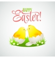 Easter card with chickens and eggs vector image