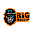 angry gorilla head in baseball cap on a dark vector image vector image