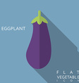 Eggplant flat icon with long shadow vector image