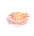 pizza margarita delicious meal with tomatoes vector image
