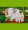 two elephants and kids in the woods vector image vector image