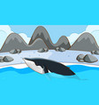 whale swimming in cold water vector image