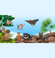 wild animals on the mountain vector image vector image