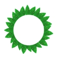 Circle Green Leaves Frame vector image