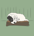 dog lies on pillow vector image