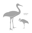 Heron Isolated bird on white background vector image vector image