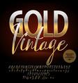 luxury emblem gold vintage vector image vector image
