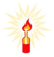 Molotov vector image vector image