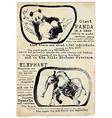 Panda and Elephant - placard vector image