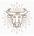 Vintage bull head Hand drawn sketch vector image