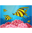 a group stripe-colored fishes under sea vector image