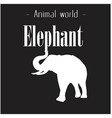 animal world elephant black and white background v vector image