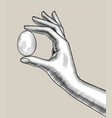 female hand with an egg vector image