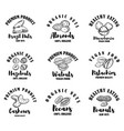 set raw nuts labels design element for logo vector image