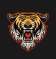tiger head in vintage colored vector image