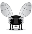 black and white of a baby fly vector image vector image