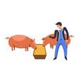 farm animals man farmer tending for pigs eating vector image