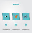 flat icons rooster trunked animal panther and vector image vector image