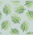 monstera leaf pattern vector image
