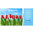 nature floral background vector image vector image