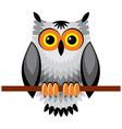 owl vs vector image vector image