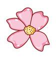 sakura flower decoration japanese symbol isolated vector image