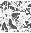 Seamless butterfly silhouettes vector image vector image