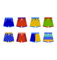 swim shorts collection swimming trunks set icon vector image vector image