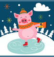 winter poster with pig skating vector image vector image